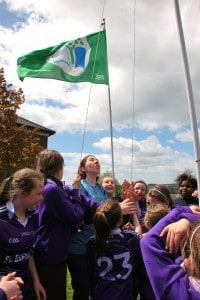 Many hands help the flag to fly